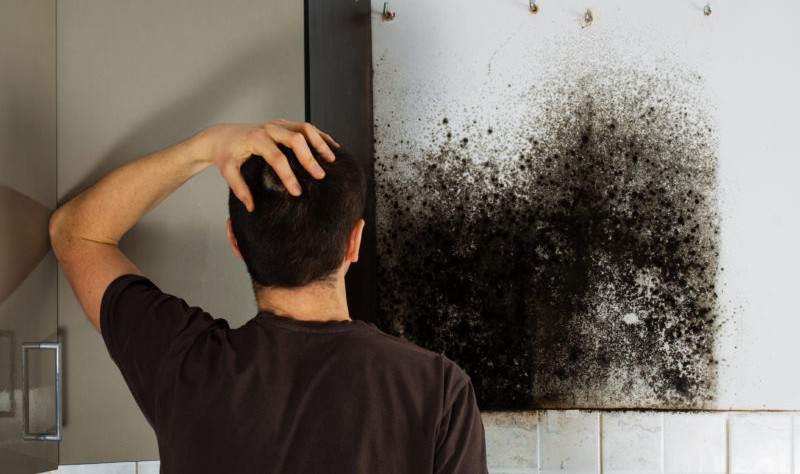 How to Clean Mould