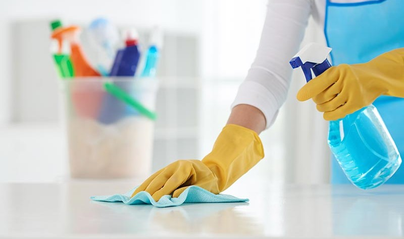 cropped picture of a professional disinfecting a surface